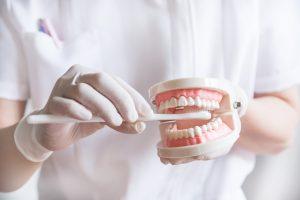 歯磨き 歯ブラシ